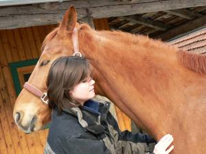 Pferde Osteopathie wirkt entspannend
