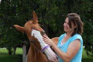 Behandlung Auge mit Pferde Osteopathie